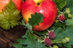 Κόκκινο χρώμα της Apple Στοκ Φωτογραφία