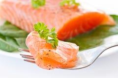 κόκκινο ψαριών που αλατίζεται Στοκ Εικόνες