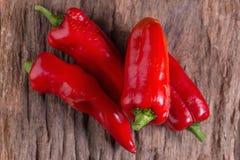 Κόκκινο ψυχρό πιπέρι στο ξύλινο μαύρο υπόβαθρο Κόκκινος - καυτό τσίλι pepp Στοκ φωτογραφίες με δικαίωμα ελεύθερης χρήσης