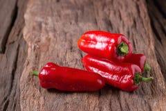 Κόκκινο ψυχρό πιπέρι στο ξύλινο μαύρο υπόβαθρο Κόκκινος - καυτό τσίλι pepp Στοκ Εικόνες