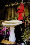 κόκκινο ύδωρ αντλιών πουλιών λουτρών Στοκ Εικόνες