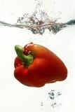 κόκκινο ύδωρ πιπεριών κουδουνιών Στοκ εικόνα με δικαίωμα ελεύθερης χρήσης