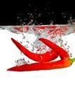 κόκκινο ύδωρ τσίλι Στοκ Εικόνα
