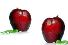 κόκκινο δύο μήλων Στοκ Εικόνα
