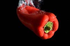 κόκκινο ύδωρ πιπεριών Στοκ Εικόνες
