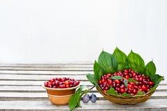 Κόκκινο ώριμο dogwood μούρων σε ένα πιάτο αργίλου και ένα ψάθινο καλάθι που στέκονται σε μια ξύλινη επιφάνεια Στοκ φωτογραφία με δικαίωμα ελεύθερης χρήσης