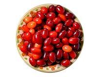 Κόκκινο ώριμο dogwood μούρων σε ένα πιάτο αργίλου Στοκ Εικόνες