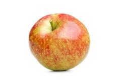 Κόκκινο aple Στοκ Φωτογραφίες