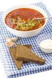 Κόκκινο borscht Στοκ Φωτογραφίες