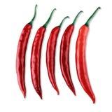 κόκκινο chilis Στοκ εικόνες με δικαίωμα ελεύθερης χρήσης