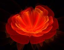 Κόκκινο fractal λουλουδιών διανυσματική απεικόνιση