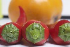 Κόκκινο juicy καυτό πιπέρι και κίτρινη ντομάτα στο άσπρο υπόβαθρο Στοκ εικόνες με δικαίωμα ελεύθερης χρήσης