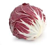 κόκκινο radicchio λάχανων Στοκ Εικόνα