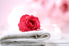 Κόκκινο rosse Στοκ Εικόνα