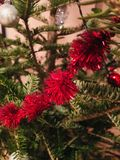 Κόκκινο snowflake στο πράσινο δέντρο στοκ φωτογραφίες