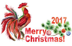 Κόκκορας και διακοσμημένος κλάδος δέντρων πεύκων με τη Χαρούμενα Χριστούγεννα σημαδιών και 2017 στο άσπρο υπόβαθρο απεικόνιση αποθεμάτων