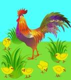 Κόκκορας και κοτόπουλο στο λιβάδι κρύβοντας διάνυσμα φιδιών εικόνων λαβυρίνθου κυνηγιού Στοκ φωτογραφία με δικαίωμα ελεύθερης χρήσης