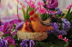 Κόκκορας, πουλερικά Στοκ Φωτογραφία