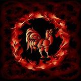 Κόκκορας πυρκαγιάς στοκ εικόνα με δικαίωμα ελεύθερης χρήσης