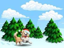 Κόλλεϊ και fir-trees gor συνόρων διανυσματική απεικόνιση