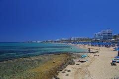 Κόλπος δέντρων σύκων στη Κύπρο Στοκ Εικόνα