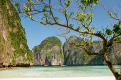 Κόλπος της Maya Phi Phi στο νησί Leh, επαρχία Krabi, Ταϊλάνδη Στοκ εικόνες με δικαίωμα ελεύθερης χρήσης