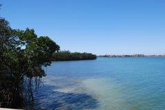 Κόλπος Φλώριδα Sarasota Στοκ φωτογραφία με δικαίωμα ελεύθερης χρήσης