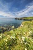 Κόλπος Abereiddi στη φωτεινή θερινή ημέρα σε Pembrokeshire στοκ εικόνα με δικαίωμα ελεύθερης χρήσης