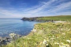 Κόλπος Abereiddi στη φωτεινή θερινή ημέρα σε Pembrokeshire στοκ εικόνες
