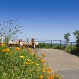 Κόλπος Bouley, Τζέρσεϋ, το Μάιο στοκ εικόνα με δικαίωμα ελεύθερης χρήσης