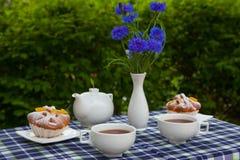 Κόμη Grey τσάι Στοκ εικόνα με δικαίωμα ελεύθερης χρήσης