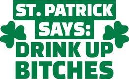 Κόμμα ημέρας του ST Πάτρικ ` s - το ST Πάτρικ λέει: Ποτό επάνω στις σκύλες διανυσματική απεικόνιση