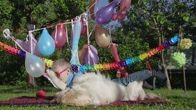 Κόμμα σκυλιών και αγοριών φιλμ μικρού μήκους