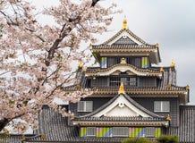 Κόρακας του Οκαγιάμα Castle που πετιέται κατά τη διάρκεια της εποχής άνθισης Sakura Στοκ Φωτογραφία