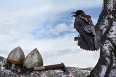 Κόρακες και αρχαία όπλα Στοκ φωτογραφίες με δικαίωμα ελεύθερης χρήσης