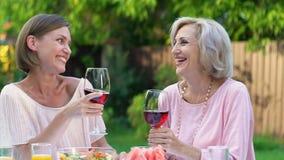 Κόρη και πεθερά που επικοινωνούν ευχάριστα υπαίθρια με το ποτήρι του κρασιού απόθεμα βίντεο