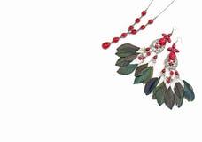Κόσμημα για τις γυναίκες Σκουλαρίκια με τα φτερά Στοκ φωτογραφία με δικαίωμα ελεύθερης χρήσης