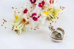 Κόσμημα γυναικών ` s, το σύμβολο της καρδιάς Στοκ Εικόνες