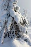 Κόσμος κάτω από το χιόνι στα βουνά Στοκ εικόνα με δικαίωμα ελεύθερης χρήσης