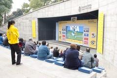 κόσμος ποδοσφαίρου φλ&upsilo Στοκ Εικόνα