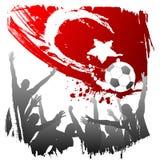 κόσμος της Τουρκίας φλυ Στοκ Εικόνες