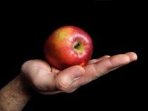 κόσμος χεριών τροφών μήλων Στοκ φωτογραφίες με δικαίωμα ελεύθερης χρήσης
