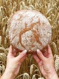 κόσμος ψωμιού Στοκ Εικόνες