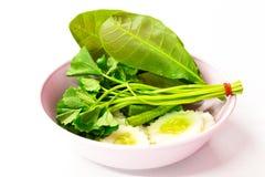 Κόστος-επάνω στα ταϊλανδικά τρόφιμα οι επιλογές είναι δευτερεύον λαχανικό πιάτων στο άσπρο υπόβαθρο Στοκ Εικόνες