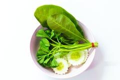 Κόστος-επάνω στα ταϊλανδικά τρόφιμα οι επιλογές είναι δευτερεύον λαχανικό πιάτων στο άσπρο υπόβαθρο Στοκ εικόνα με δικαίωμα ελεύθερης χρήσης