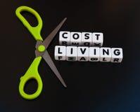 Κόστος περικοπών ζωής Στοκ φωτογραφία με δικαίωμα ελεύθερης χρήσης