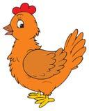Κότα (διανυσματική συνδετήρας-τέχνη) ελεύθερη απεικόνιση δικαιώματος