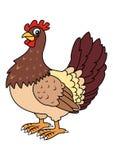 κότα Στοκ Εικόνες