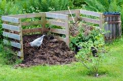 Κότες που εργάζονται στο λίπασμα κήπων Στοκ φωτογραφίες με δικαίωμα ελεύθερης χρήσης