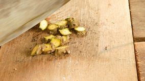 Κόψτε το cordifolia Tinospora απόθεμα βίντεο